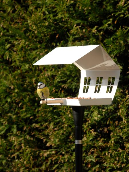 Danish Designer Bird Feeder
