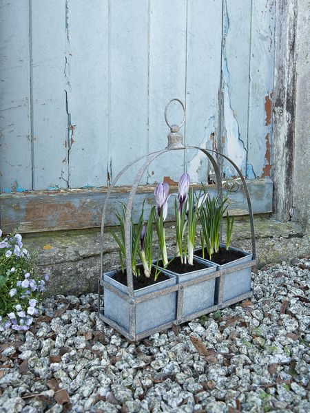 Crown Zinc Planter
