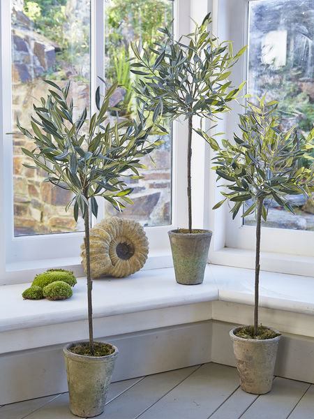 Medium Faux Olive Tree Artificial Olive Trees Uk